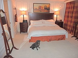 King Suite at Windsor Arms Hotel